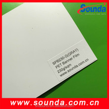 pet banner film designed fo r X- banner display 230g economical