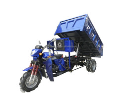 Heavy Load China Hot Sale Adult 250cc Water Cooled Motorcycles (WH25.2)