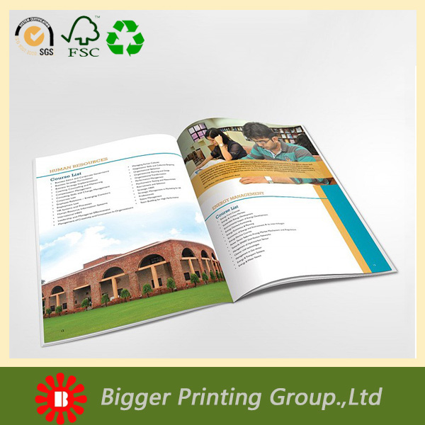 4 colour offset printing educational magazine/catalog/brochures
