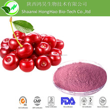 Cherry Juice Concentrate Powder- Spray dried fruit powder
