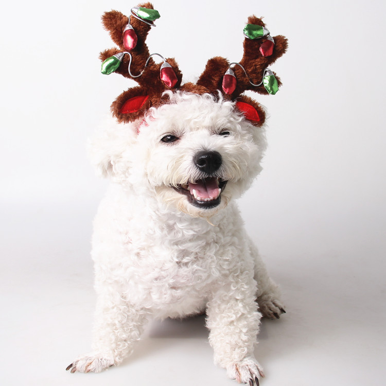 R1960H Happy Festival Gift Pet Present Dog Cats Christmas Deer Hat 2 Sizes