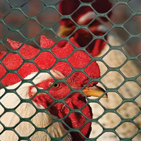Alibaba Gold Supplier chicken cage/chicken farm/chicken cage for sale for all world