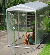large heavy duty welded mesh dog run 10x10x 6ft animal cage
