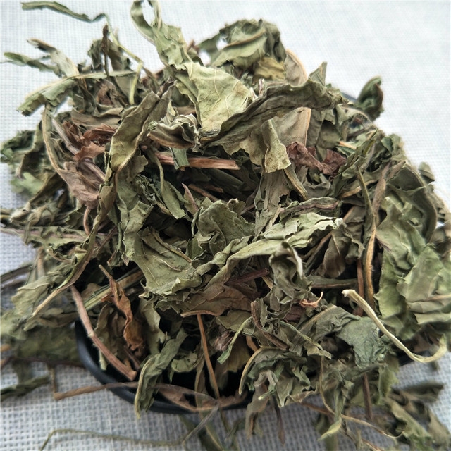 Pang da hai Traditional Chinese medicine herb the seed of boat-fruited sterculia/malva nut
