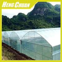 2017 New Technology Greenhouse Plastic Film