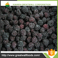 china wholesale chinese frozen blackberries(iqf fruit)