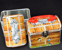 fancy adorable kids favorite gift packaging tin container metal tin box