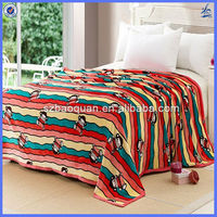 cheap fleece blankets/different kind of blankets/pet blanket