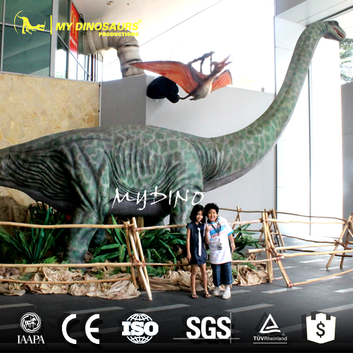 My Dino-AD154 Large Dinosaur Model Definitive Apatosaurus for Museums