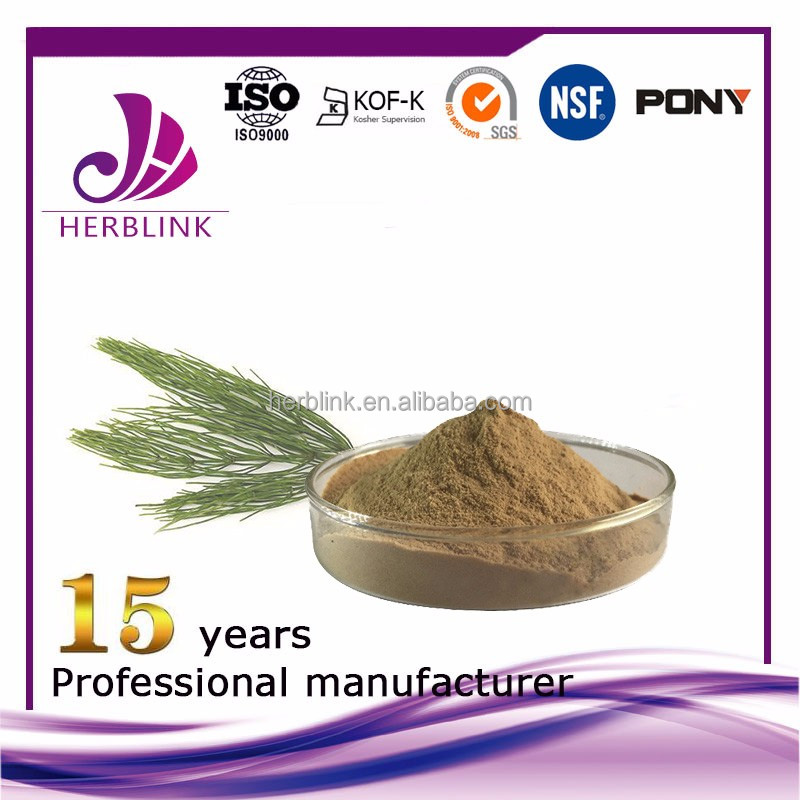 Horsetail extract best quality value