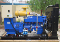 10kw-1000kw CE&ISO certificated Natural gas generator set