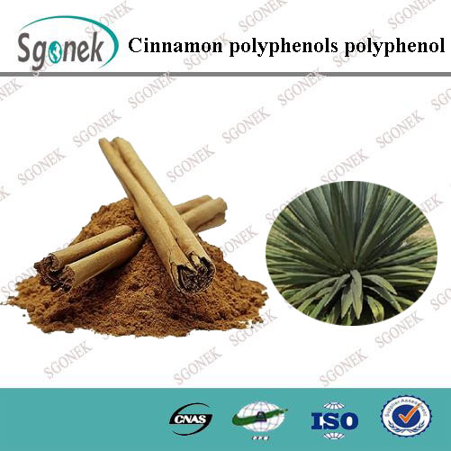 Factory Supply Cinnamon Polyphenol , Flavone , Cinnamon Etxract