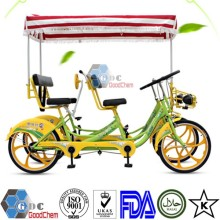 Hot Sale Luxurious Four Person Quadricycle Surrey Sightseeing Bike With Child Seat