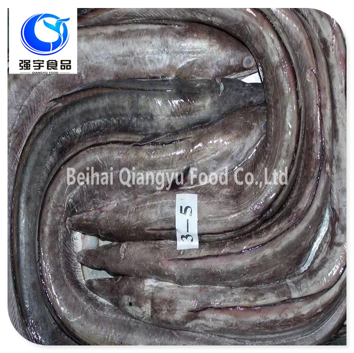 Frozen Style and Piece Shape sea Eel