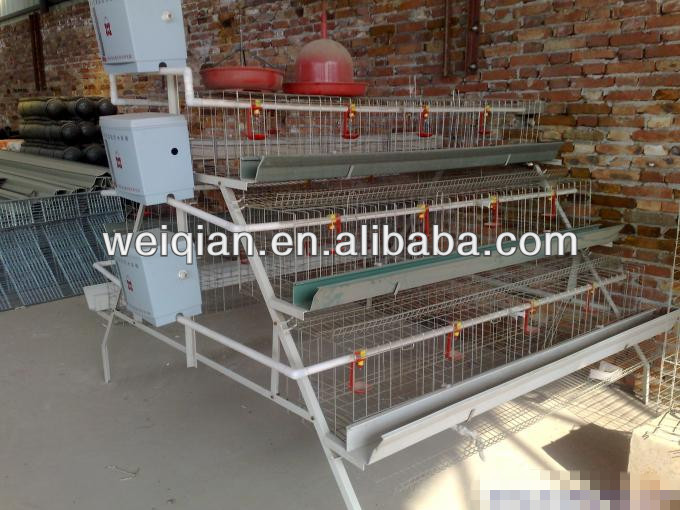 High quality battery cages laying hens