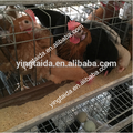 chicken house farm equipment /design layer chicekn cage