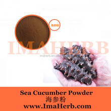 Made in China Organic medicine & food grade sea cucumber extract