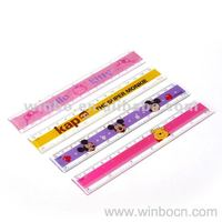PS 15CM Students Straight Ruler