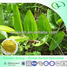 100% natural Solomonseal Rhizome Extract 20:1 10:1 50:1 GMP factory