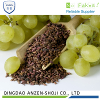 GMP Grape Seed Extract