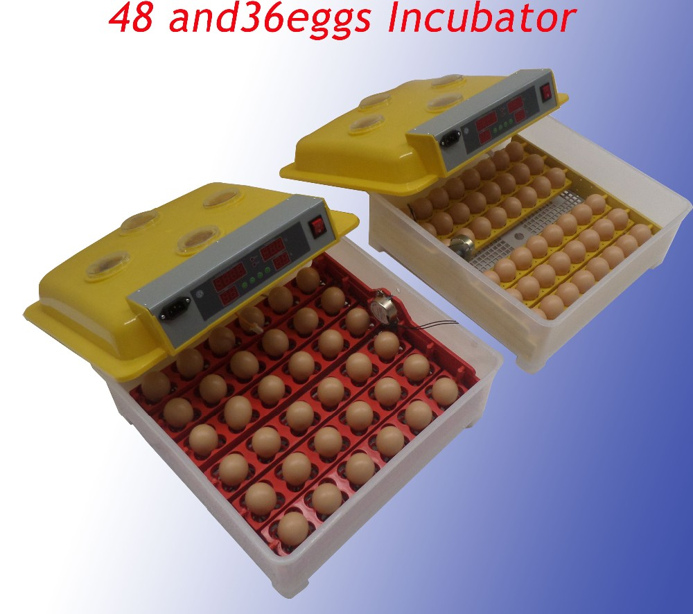 how to make a cheap egg incubator