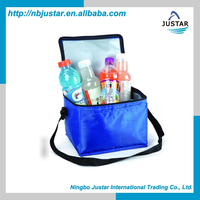 Promotional Foldable 600D 420D Polyester Small Disposable Ice Cooler Bags with Durable Liner