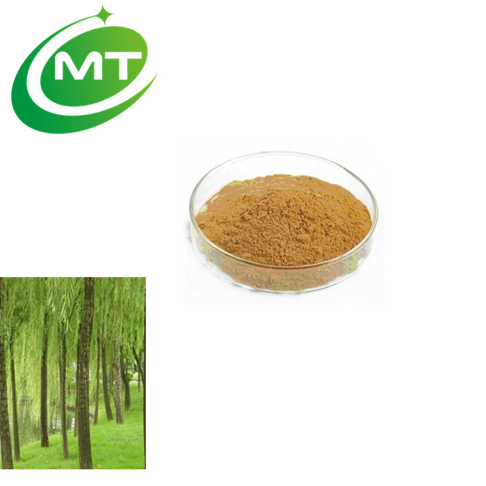 GMP factory supply top quality 98%Salicin Salix alba L White Willow Bark Extract