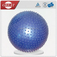 Gym Fitness Ball Massage Ball Exercise