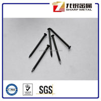 Cheap black concrete nails/black steel nail/black nail