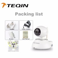 2016 TEQIN hidden outdoor hd wifi ip camera wireless IP Zoom Camera