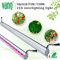 wholesale full spectrum 75w led grow light