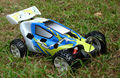 Nitro Buggy,1/5 scale 2WD Gas Powered Car,cheapest model racing car