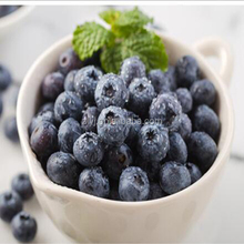 Export frozen fresh delicious blueberry fruit in China