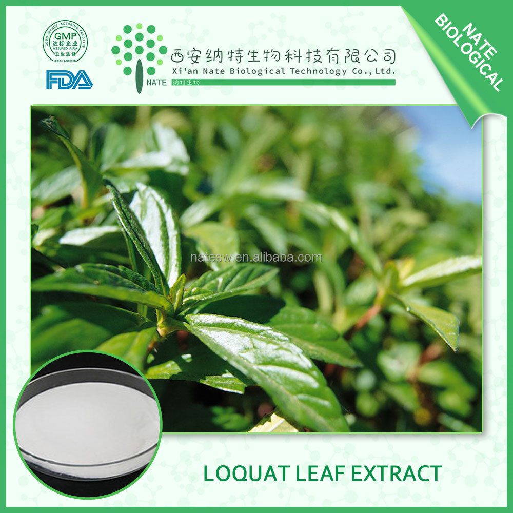 2017 best sale Loquat leaf Extract powder in bulk in health