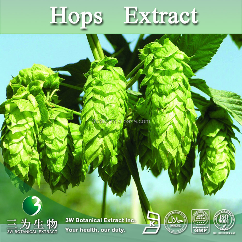 Brewing Beer Hops Extract,European Hop Spike Extract,Hops Extract