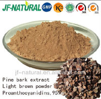 100% Pine Bark Extract health care product
