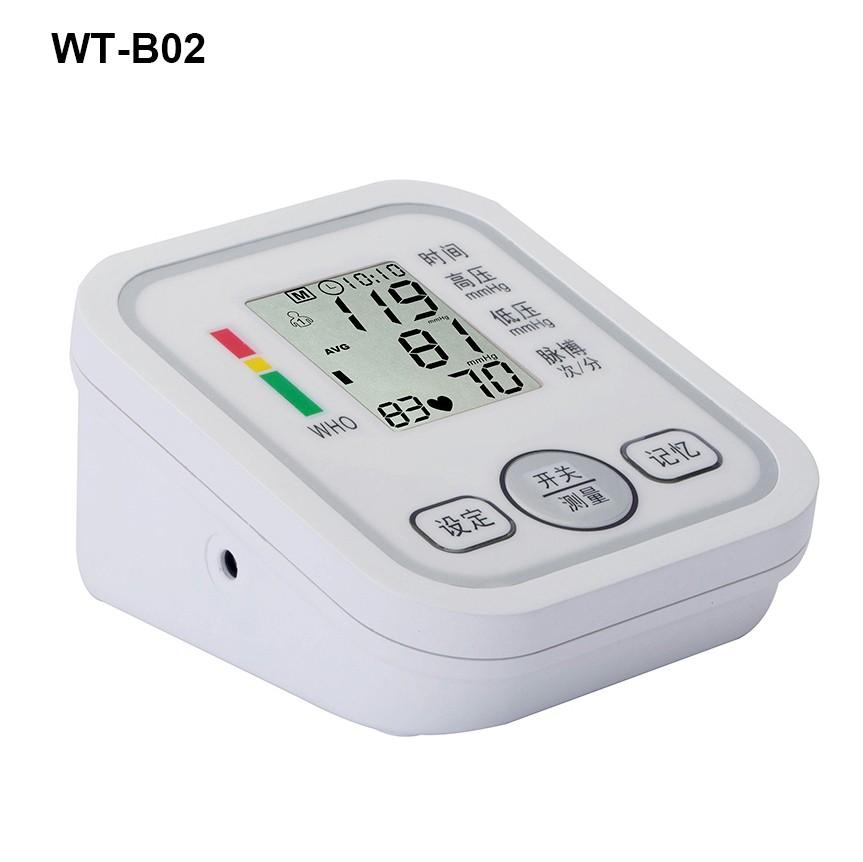 WT-B02.JPG
