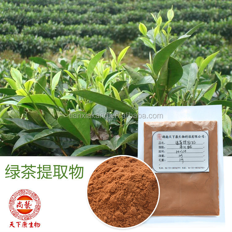 100% Natural Organic Green Tea Extract Powder 30%-98%Tea Polyphenols, 50%-98%EGCG Bio Green Tea Extract