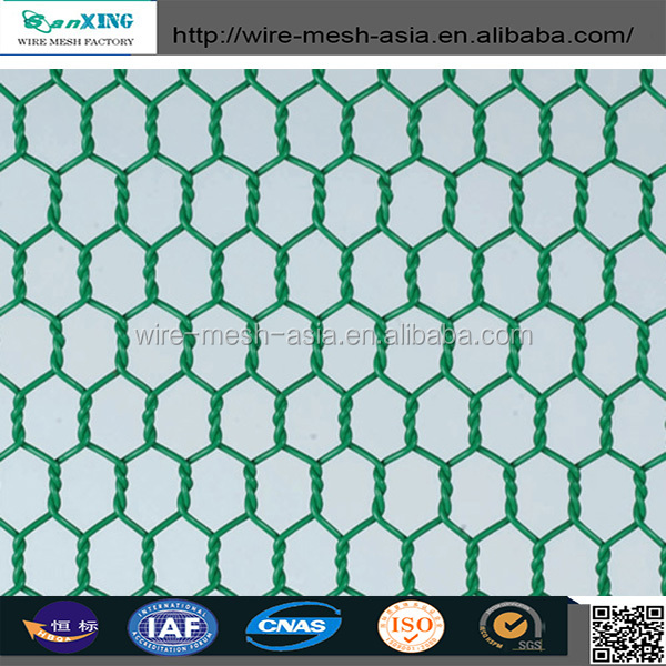 small bird cage wire mesh/PVC coated hexagonal netting supplier