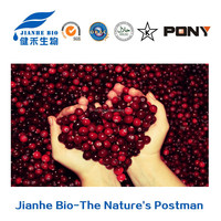 100% Natural Fruit Freeze Dried Cranberry Raw Powder