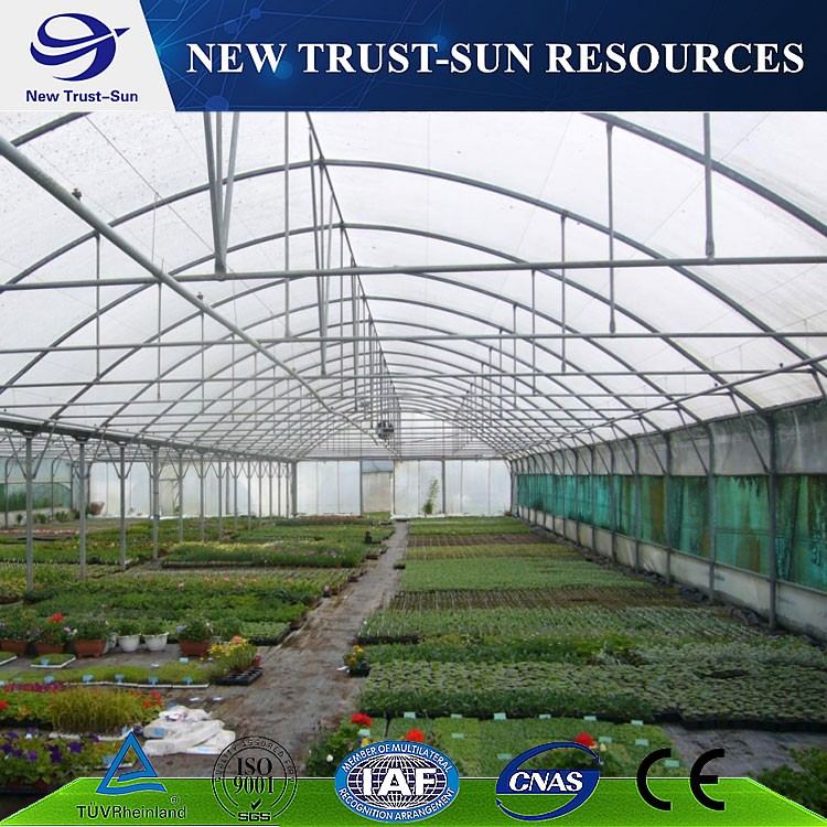 One stop service for PE/PVC/plastic film tomato greenhouse
