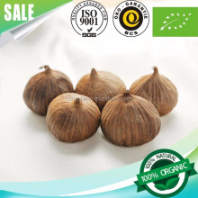 Healthy Natural Food Herb Solo Black Garlic 1 bulb/bag