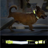 3M Reflective Adjustable Small Dog & Cat Puppy Collar
