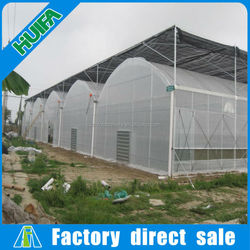 China galvanized frame transparent plastic multi-span greenhouse equipment