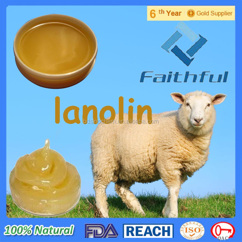 Bulk Lanolin/ Lanolin Alcohol/Wholesale Bulk Raw Pure Lanolin