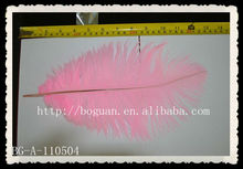 Decoraton feather wing colored ostrich feathers