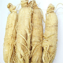 White Ginseng Natural dried white ginseng root with tail for tonic