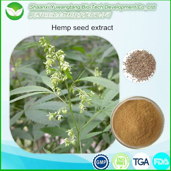 pure plant extract Hemp seed extract