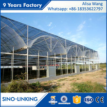 SINOLINK low cost agriculture polytunnel greenhouse tunnel film greenhouse