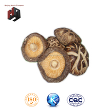 wholesale bulk dried mushrooms/dried shiitakes